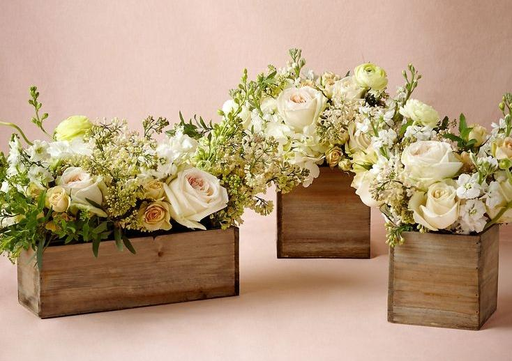 Vasos de caixote