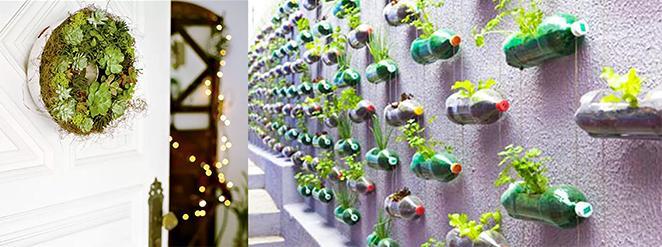 como organizar sua area externa montando uma horta vertical