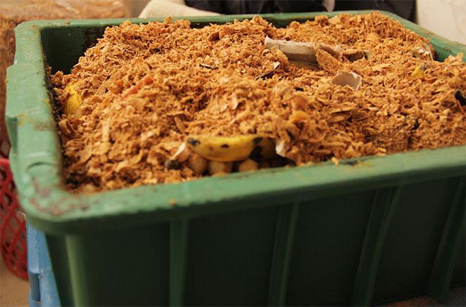 como reduzir seu lixo com uma composteira