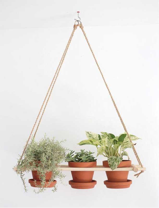 como ter uma horta em apartamento