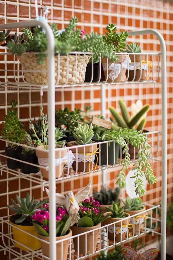 horta vertical o que plantar