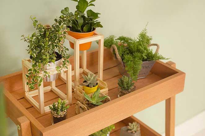 cantinho-zen-na-varanda-plantas-holi