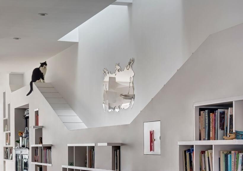 parte de cima da estante que é prateleira e caminho para gatinhos