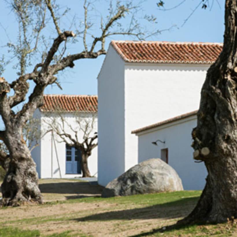 vista do jardim do resort em portugal