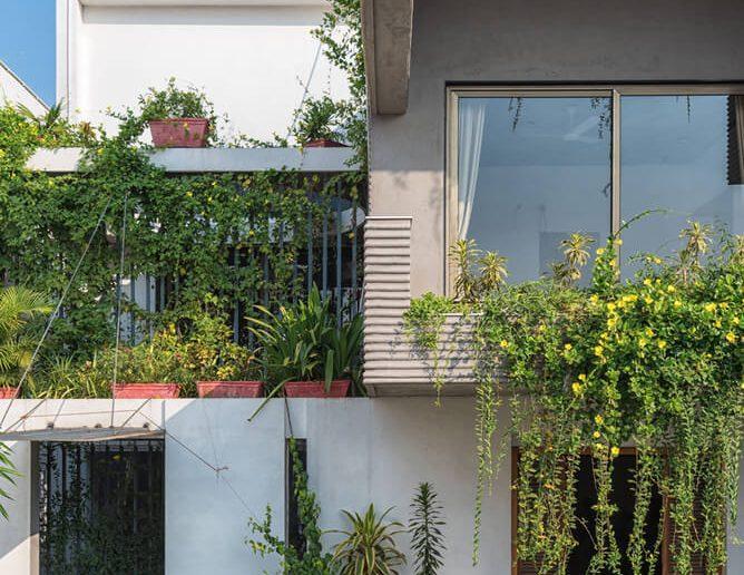 Casa de selva na cidade