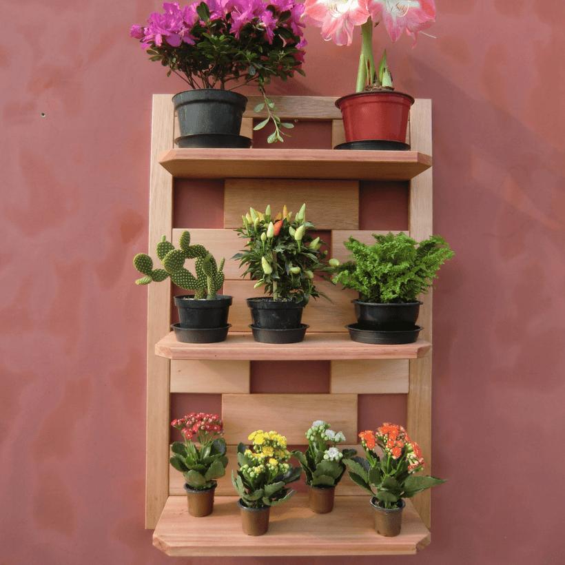 jardim vertical em parede