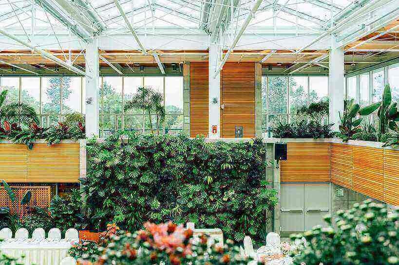 jardim em escritório cm decoracao verde e plantas verdes na parede