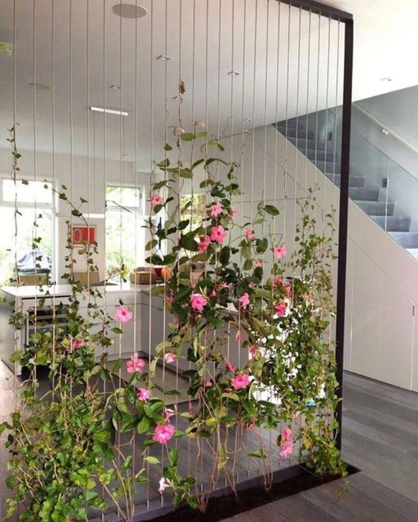 O jardim vertical como divisor de ambientes: uma treliça montada do chão até o teto dá o caminho para as trepadeiras crescerem. Via: Pinterest.