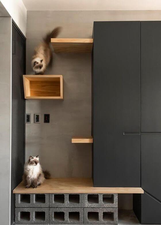 Escada alta que leva os gatos para os armários.