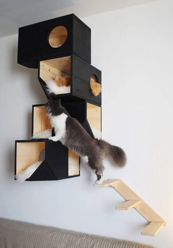 Nichos altos para gatos.